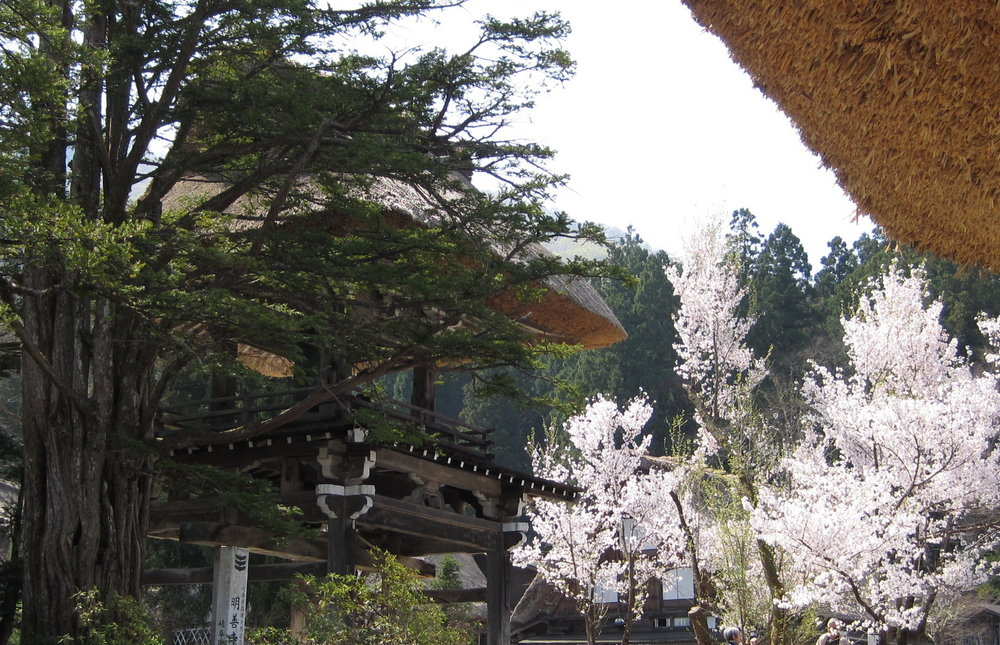 Shirakawa Go 1.JPG