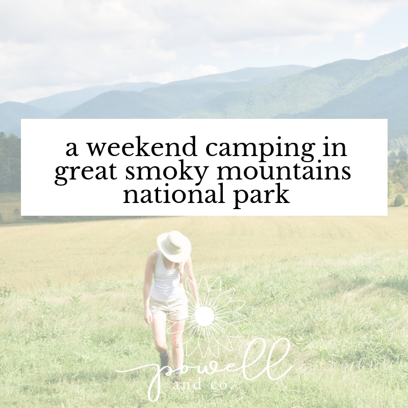 A Weekend Camping in Great Smoky Mountains National Park