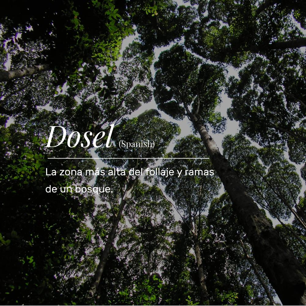 VT_dosel.png