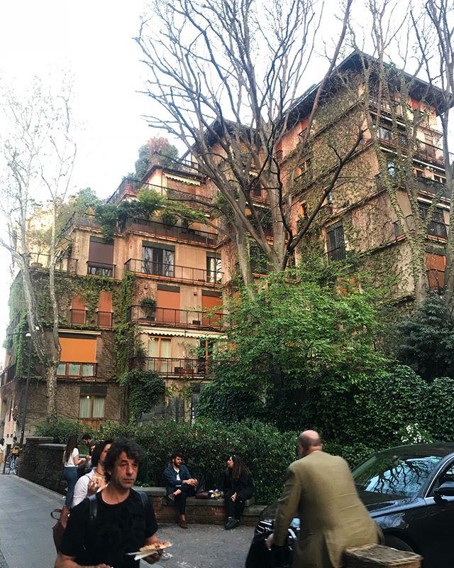 🌱 #milano
