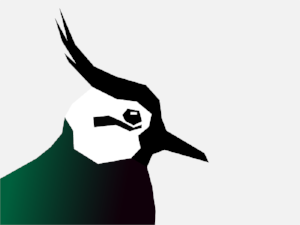 Naomi, a participant on Minding The Gap, designed the current Lapwing logo (2018).