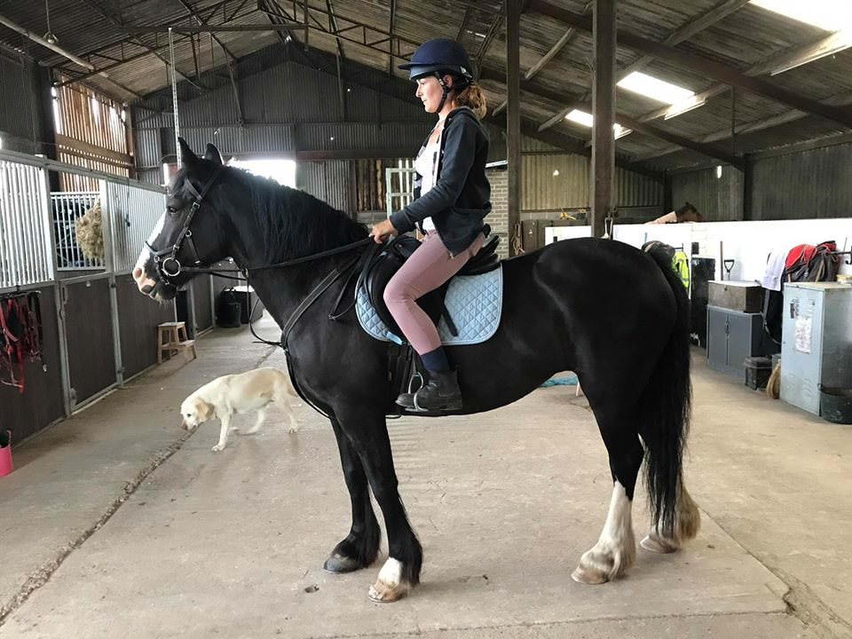 livery at gamston wood equestrian livery and coaching.jpg
