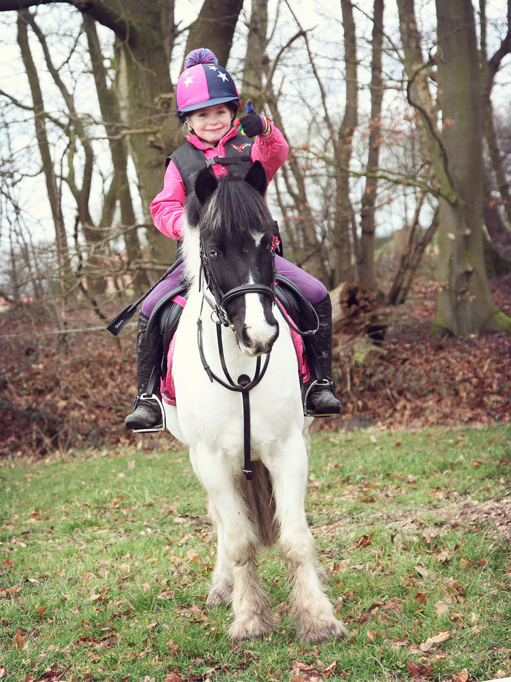 bertie_gamston_wood_equestrian.jpg