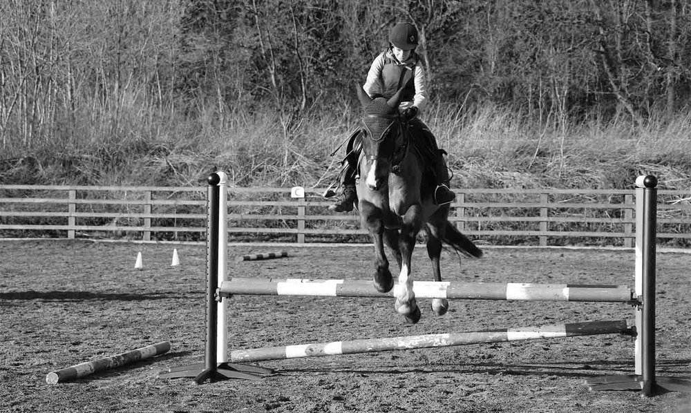 Gamston_Wood_Equestrian_livery_coaching_34_about_bw.jpg