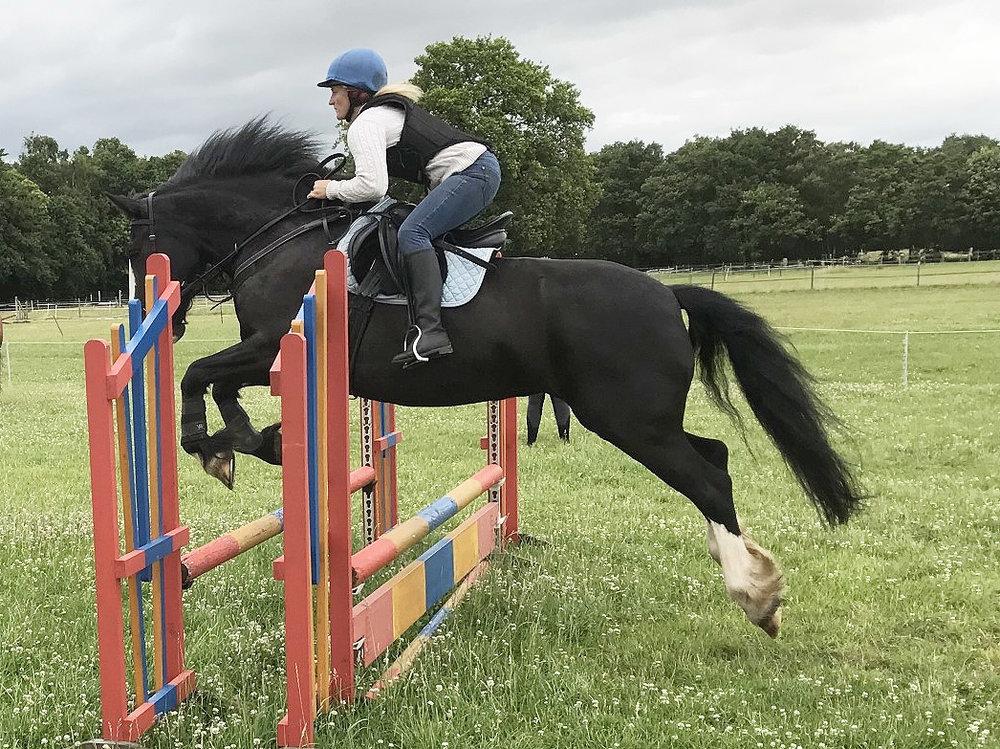 Dawn Watson gamston wood equestrian.jpg