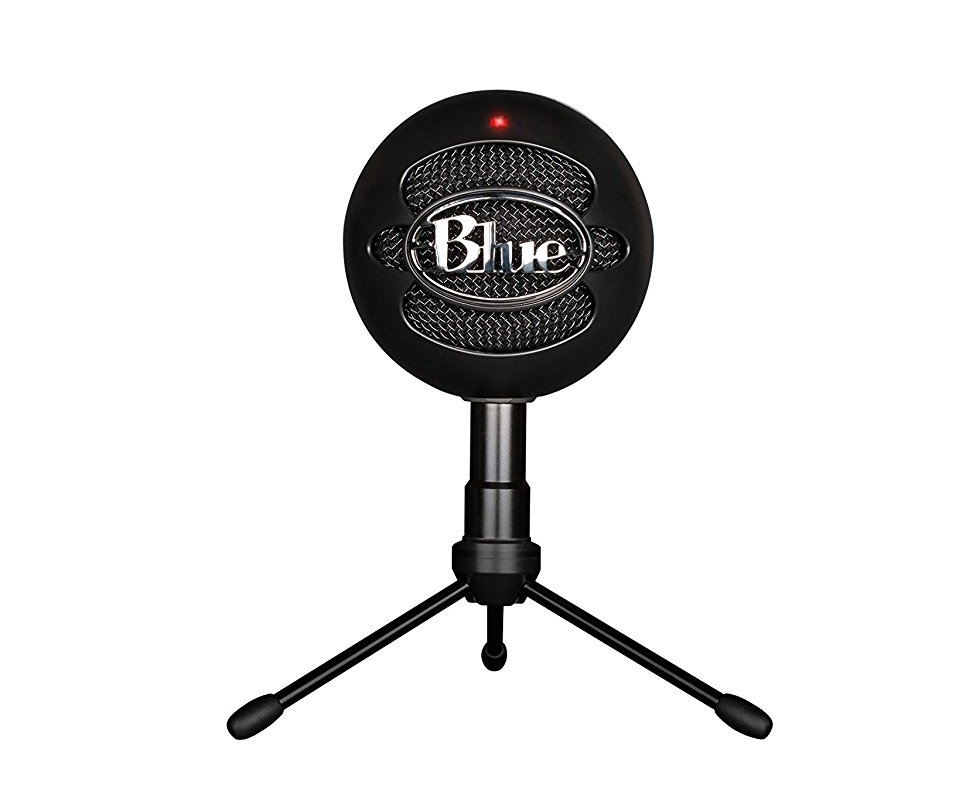 The Blue Snowball - an amazing mic for the price.