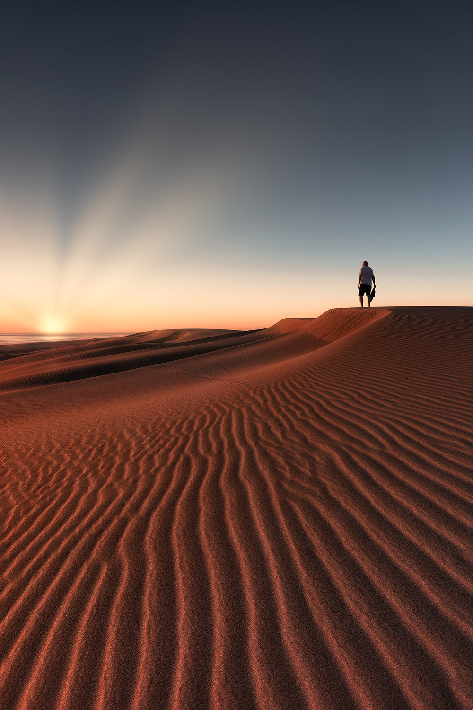 DuneExplorer_FBed.jpg