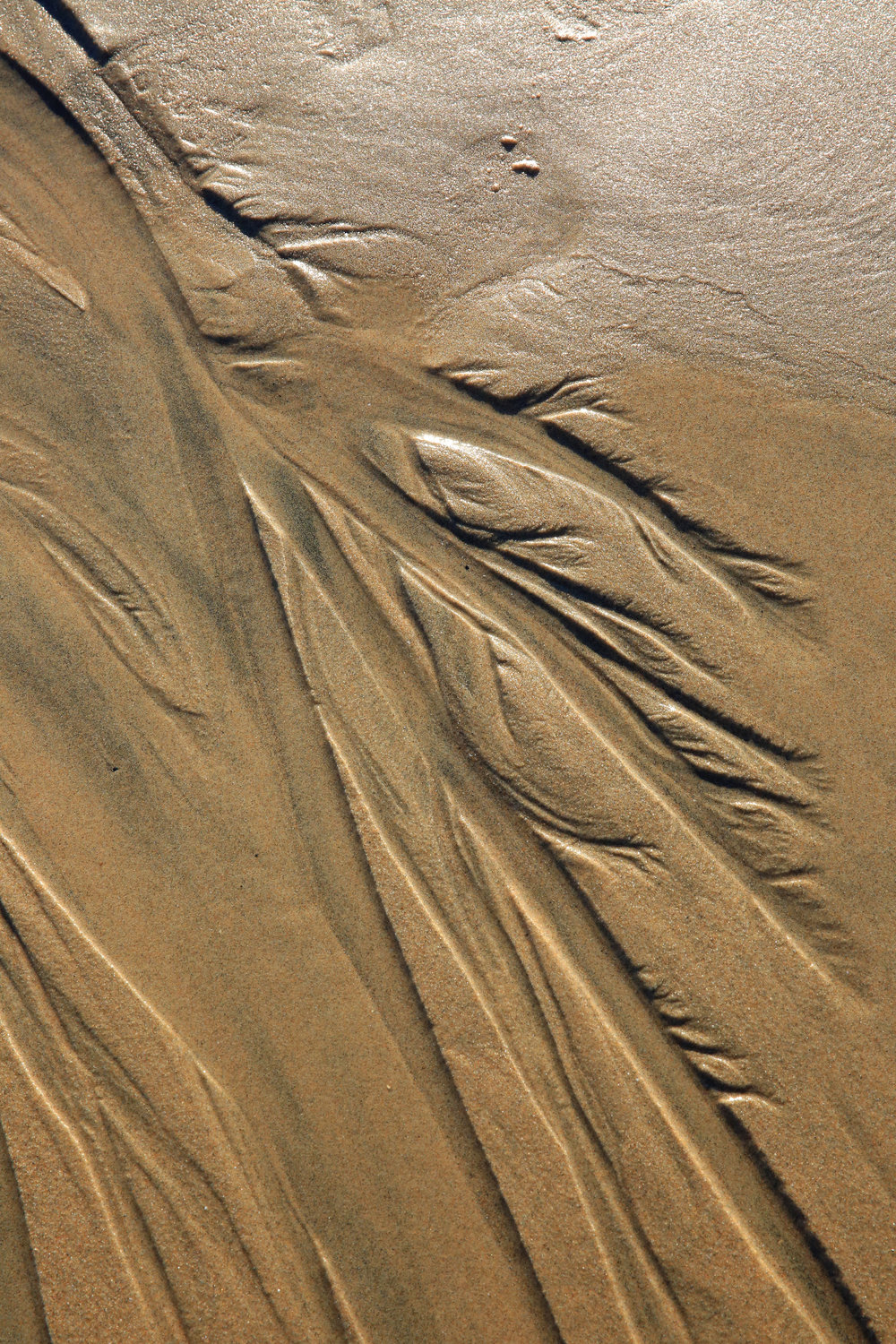 The inflow and outflow of tides create striking compositions in the sand.