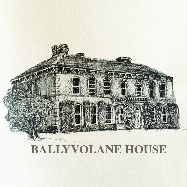 Ballyvolane House   The food at Ballyvolane is 'country house' in terms of style and is meticulously prepared by house chef Teena Mahon. The menus feature lots of good roasts, fresh and salt-water fish and game in season.    Website