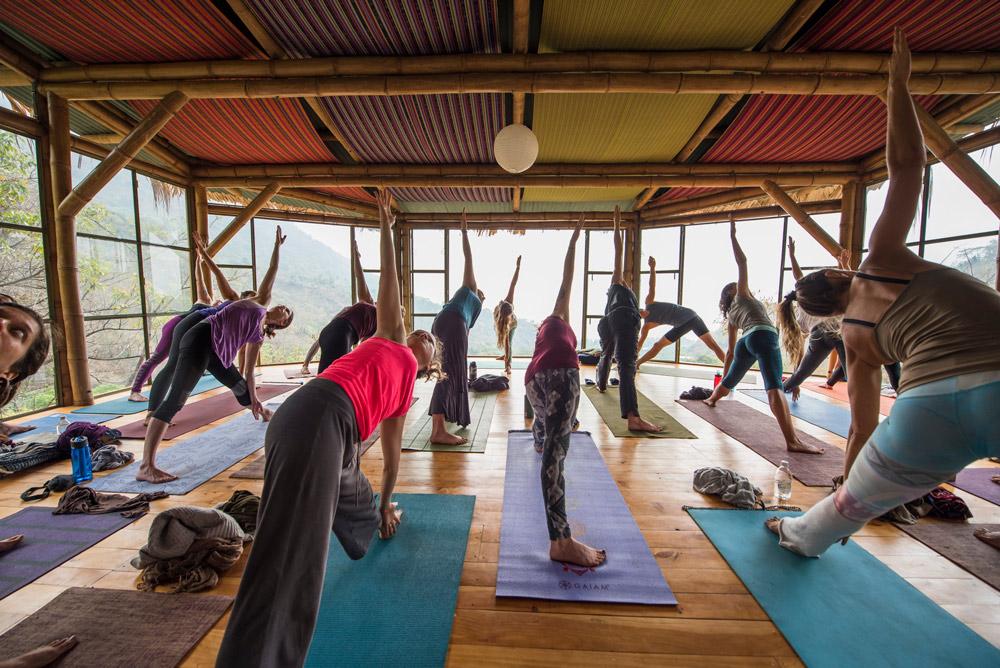 course--yoga-forest-yoga-teacher-training-kula-collective-y.jpg
