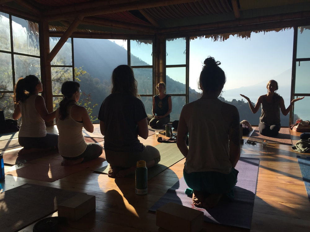 blog post, yoga forest