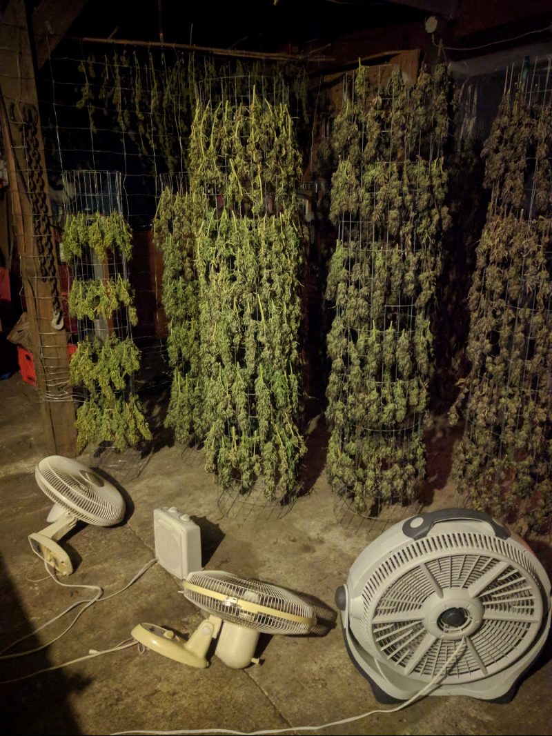 marijuana-addiction-david-blog-post