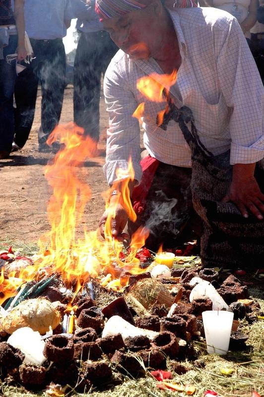 coby hadas shamanism