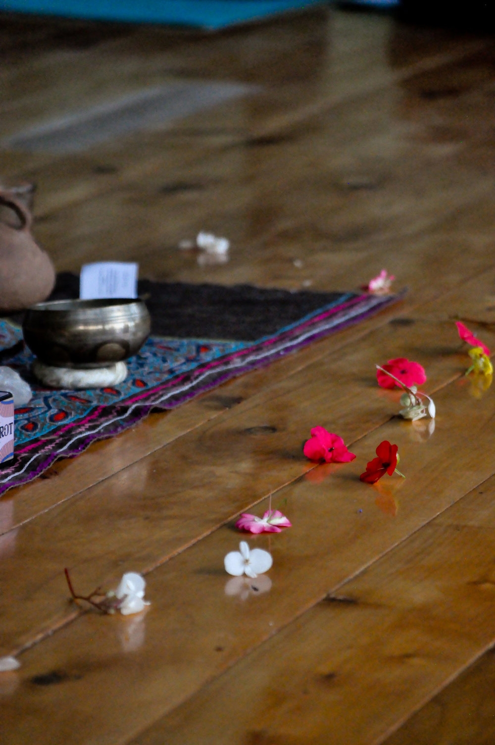 kula-yoga-teacher-training-blog-1-ryan.jpg