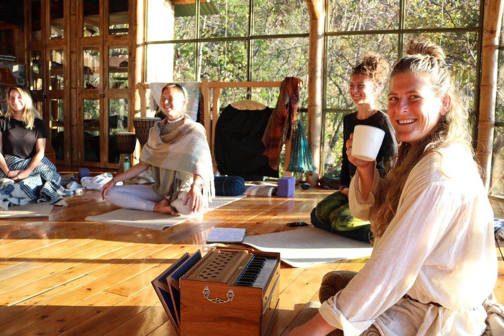 Sequencing-assists-elemental-alignment-yoga-forest-115- randi.jpeg