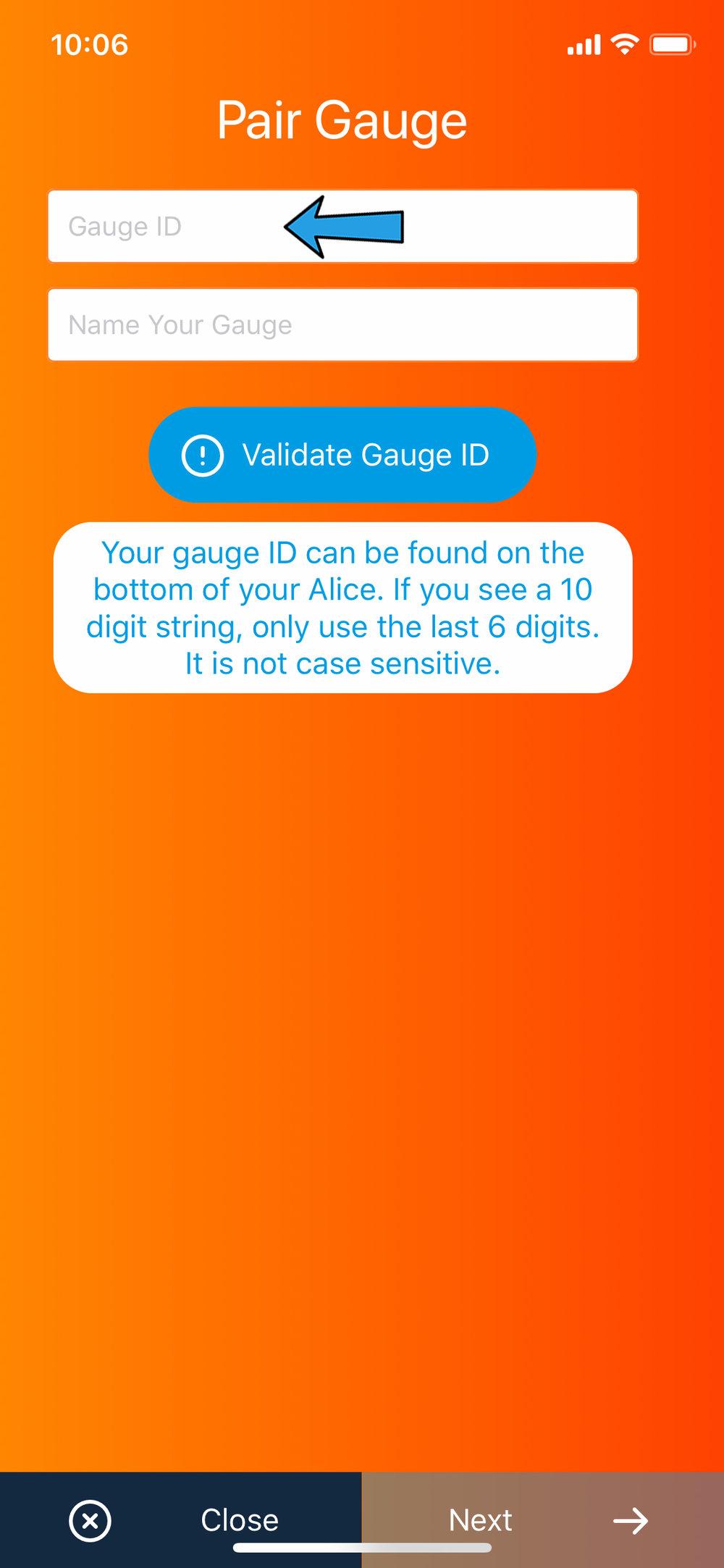 Pair gauge - gauge ID.jpg