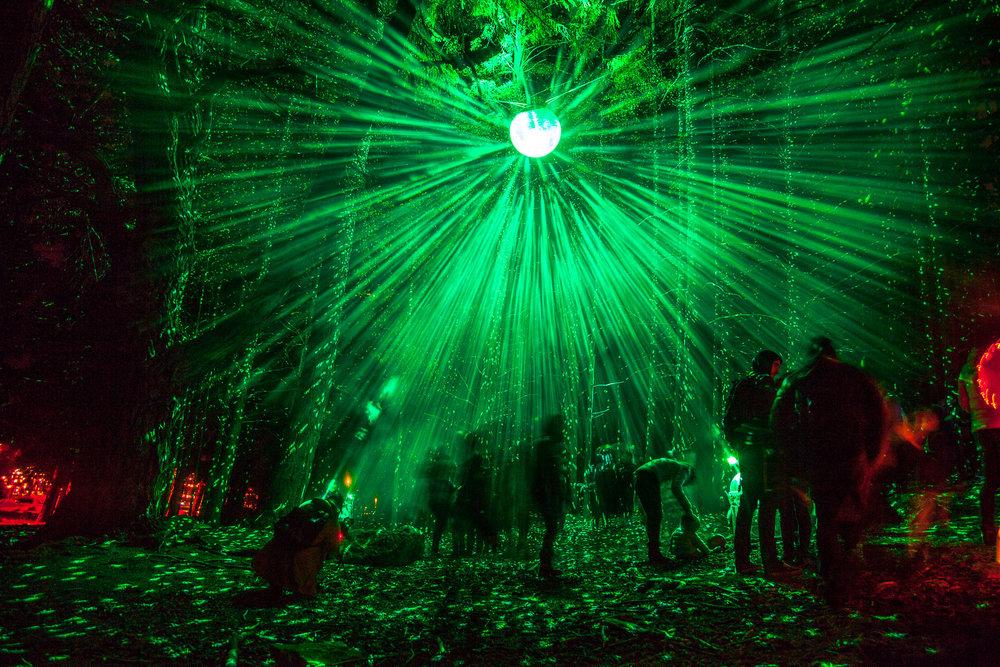 Luma Light Festival receives support towards ....
