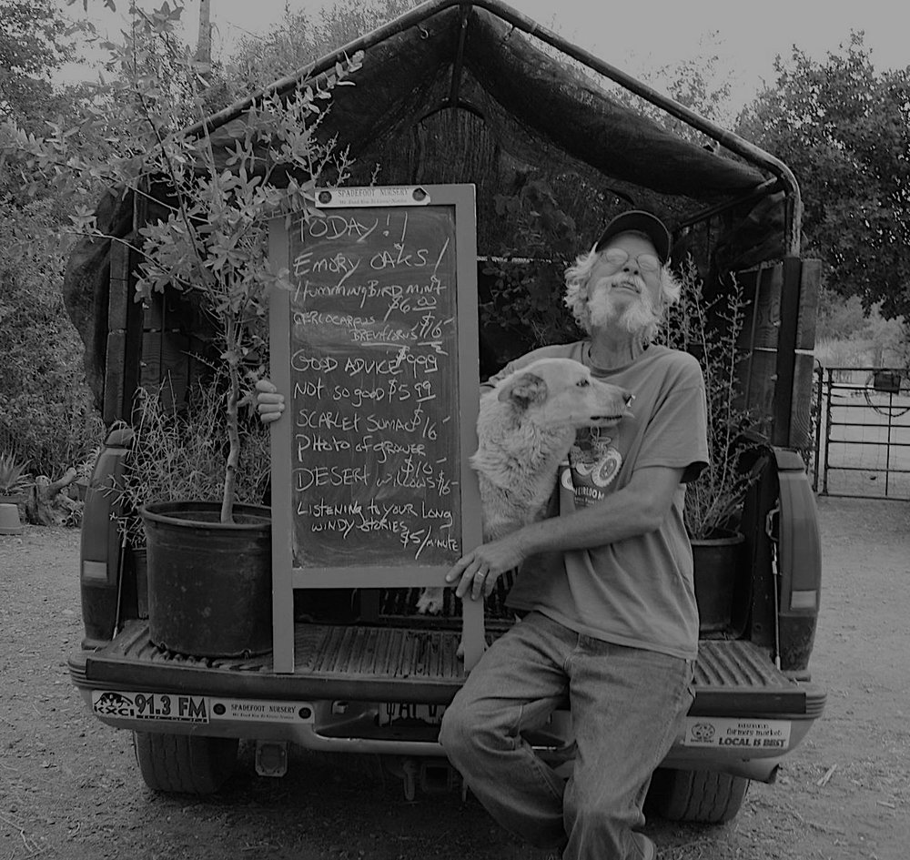 founder and grower. Petey is the manager of the Chihuahuan office (in Cochise County) mostly responsible for propagation, though he can sometimes be found at the Bisbee Farmers' Market selling plants. spadefootnursery@gmail.com - petey mesquitey