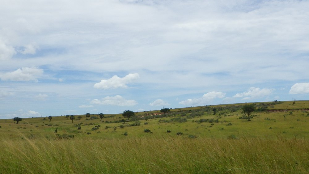 Africa 2012 607.JPG