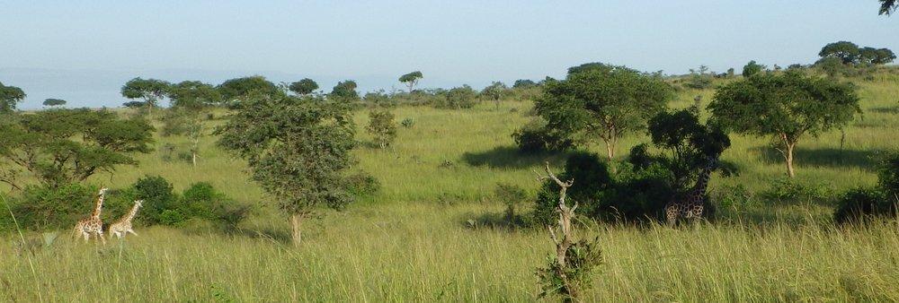 Africa 2012 627.JPG