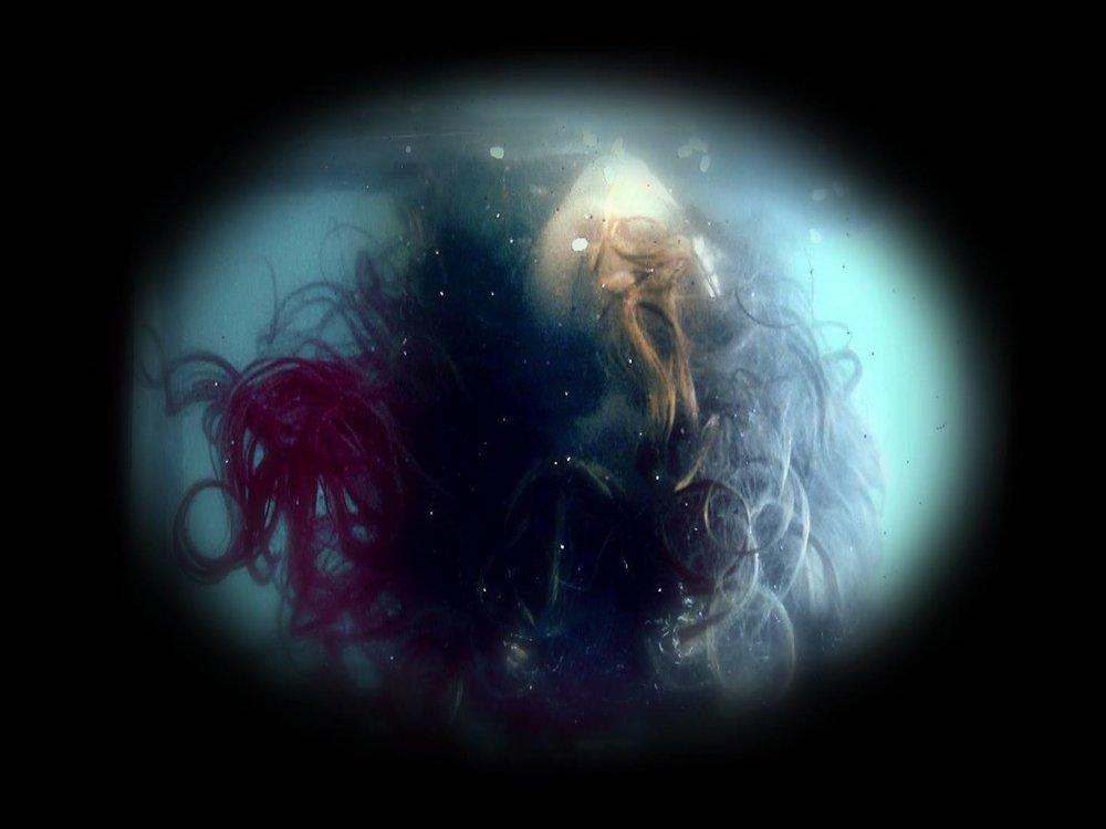 IZONE Fishbowl.jpg