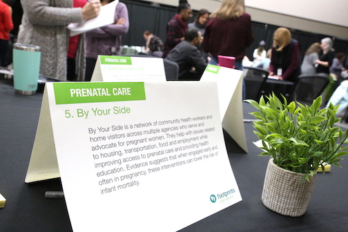 One of the options presented for voting at the advisory council meeting, held at The Summit building on January 29, 2019. Attendees were asked to vote for their favored solutions in thwarting infant mortality.