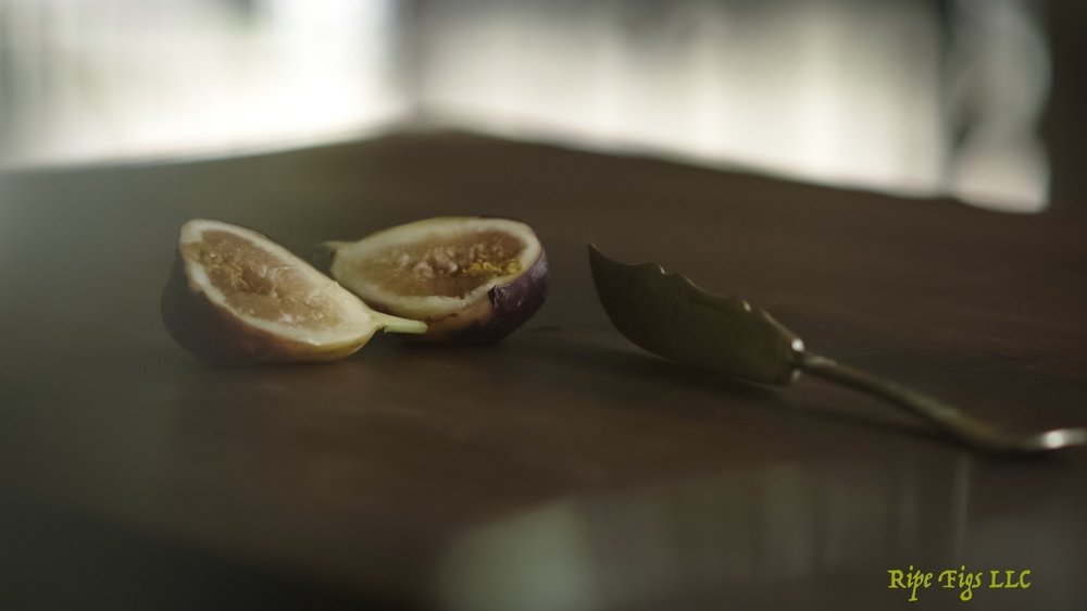 figs (5 of 9).jpg