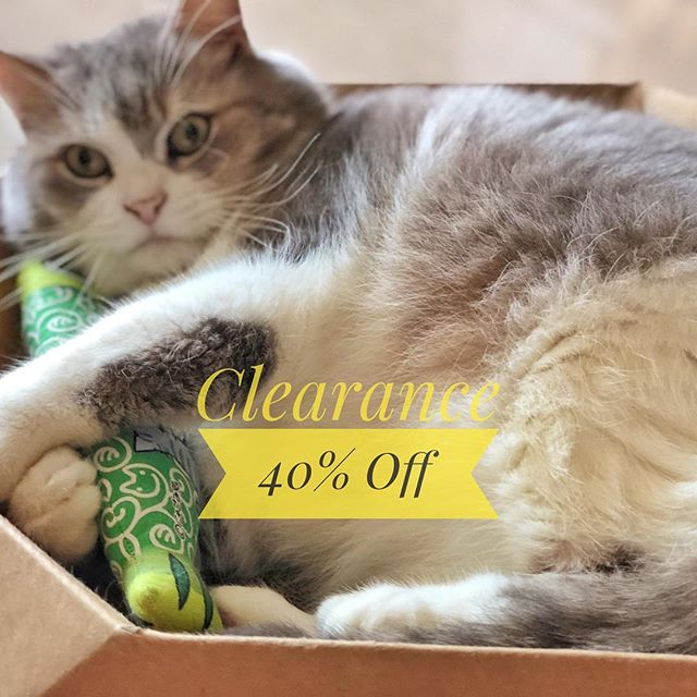 Clearance Sale!! 40% off on all items! Visit our site for details. 👉 matchalattepet.store . . . #petlife #catsofinstagram #dogsofinstagram #petboutique #dogstyle #catstyle #happydog #petshoponline #happycat #onsale