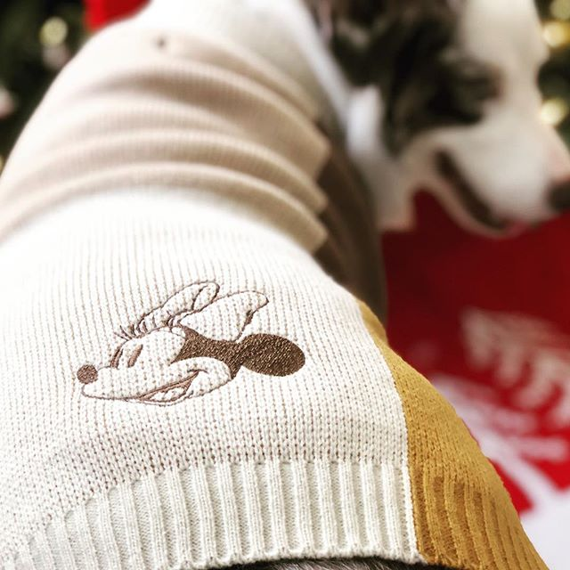 🎄🎄Get Cozy with our New Arrivals🎄🎄 Disney sweaters, hoodies and raincoats in stock!! 🐶 FREE SHIPPING NOW 👏👏👏 @themaxbone #dogsofinstagram #petboutique #catsofinstagram @lattetheaussie #pawlidays #dogapparel #mickeymouse #minniemouse #disneycollection