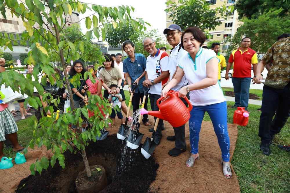 Tree Planting 2018 - 124 of 160.jpg