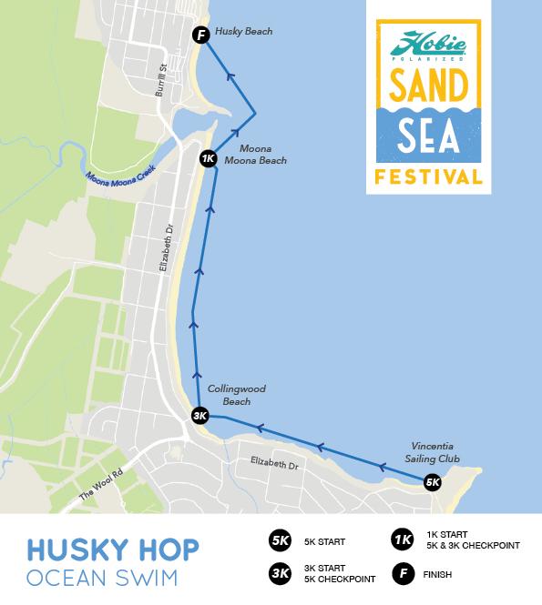 husky-hop-ocean-swim.jpg