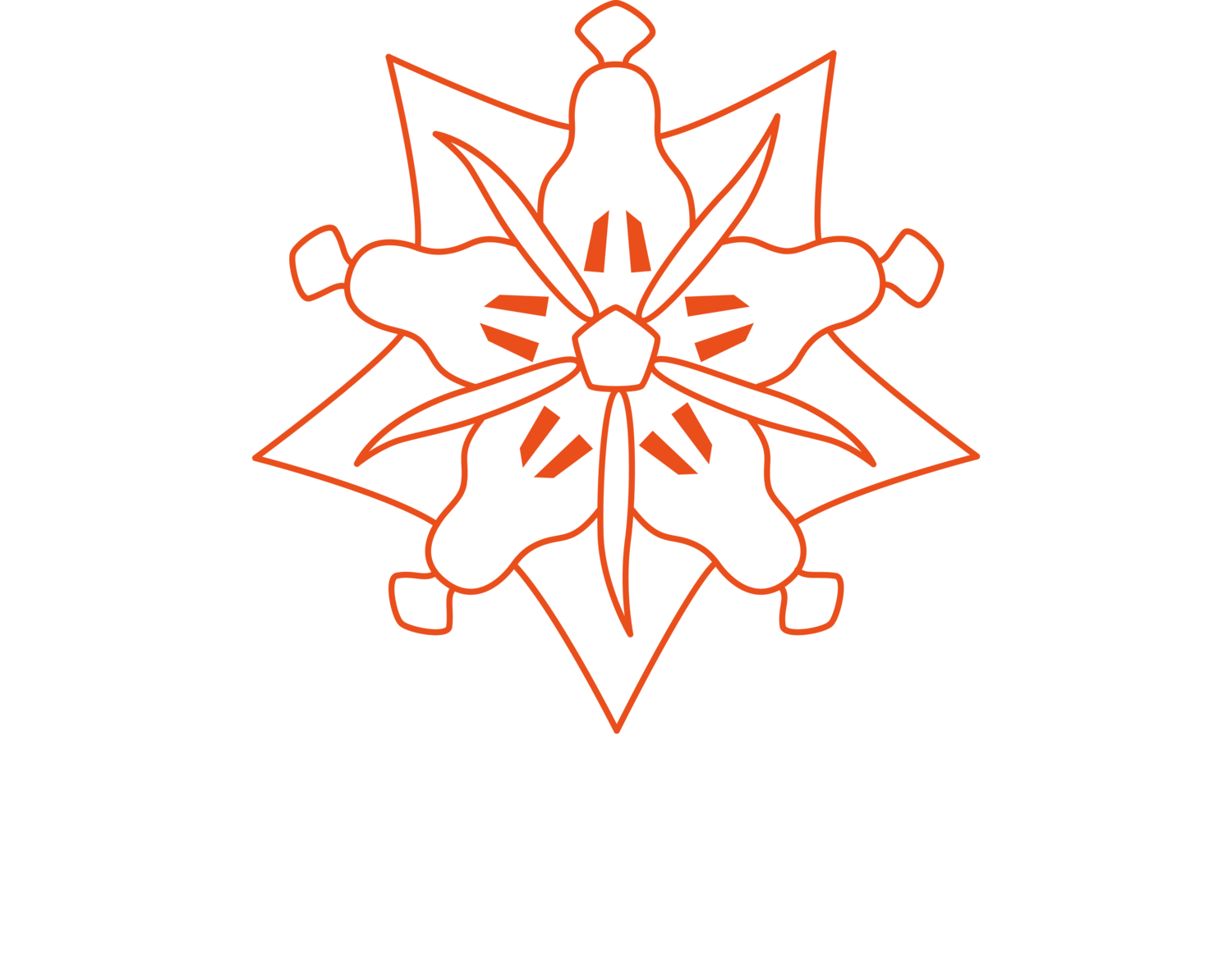 Pure Kakaw - cacao drinks for creativity, health & ceremonies.