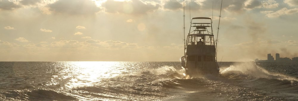 Gulf Coast Fishing_526-min-min 3.jpg