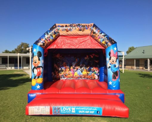 Disney Bouncy Castle Hire