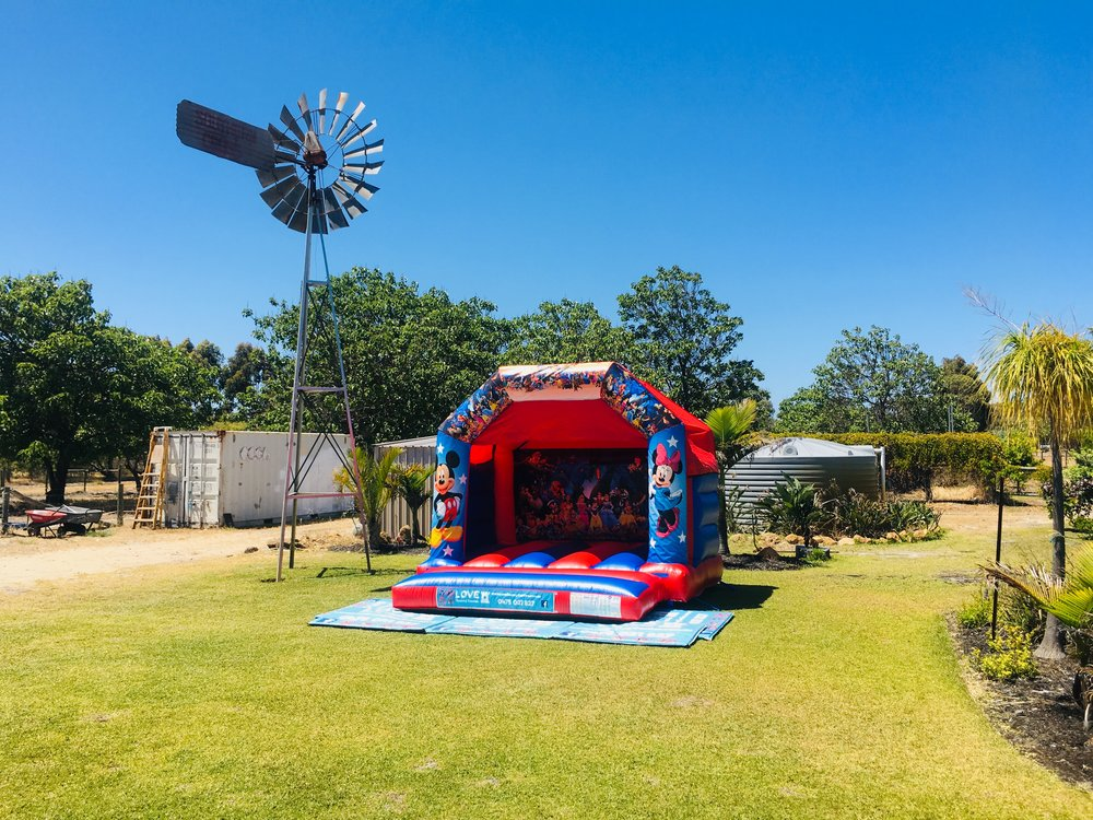 Disney Bouncy Castle Hire Perth