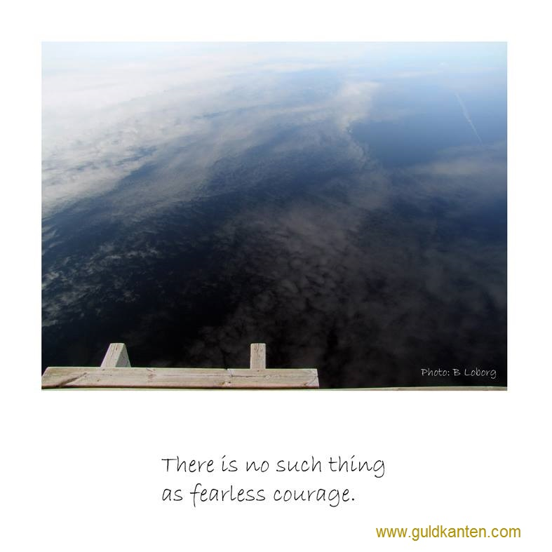 no such thing as fearless courage.jpg