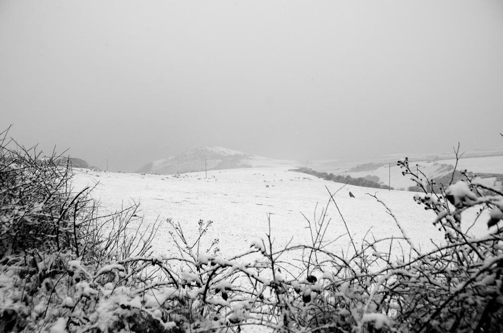 snowie-mwnt-view.jpg