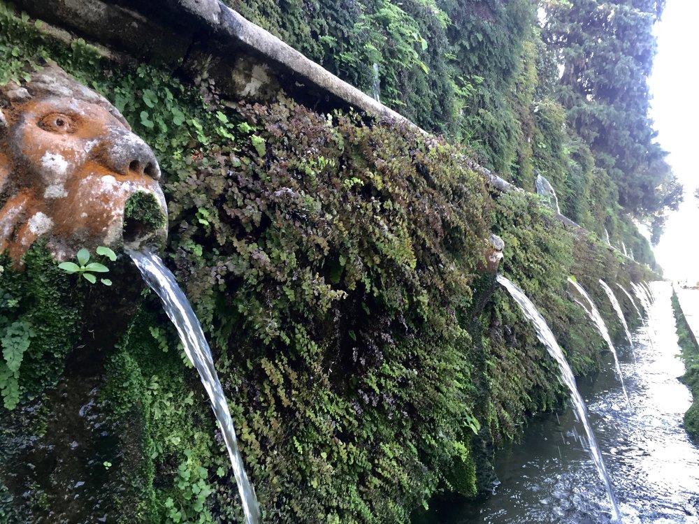 Fountains of Villa d'Este   photo by L.D. Van Cleave