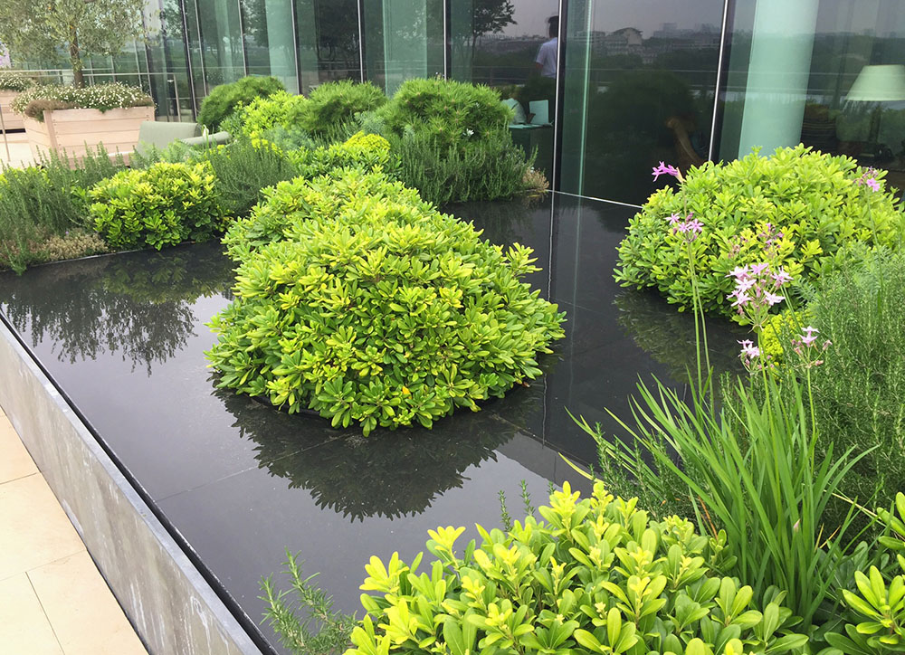 Green Roof Installations and Roof Gardens