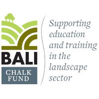 BALI Chalk Logo.png