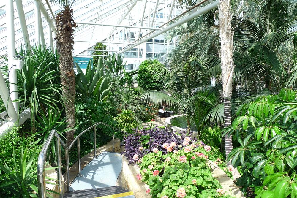 Interior Landscape - Maintenance only