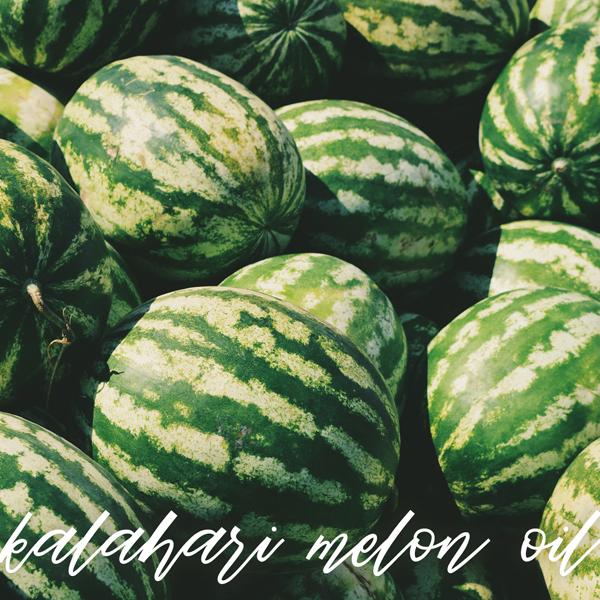 Kalahari Melon Oil Promo 1a copy.jpg