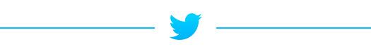 TwitterDivider_Top.jpg