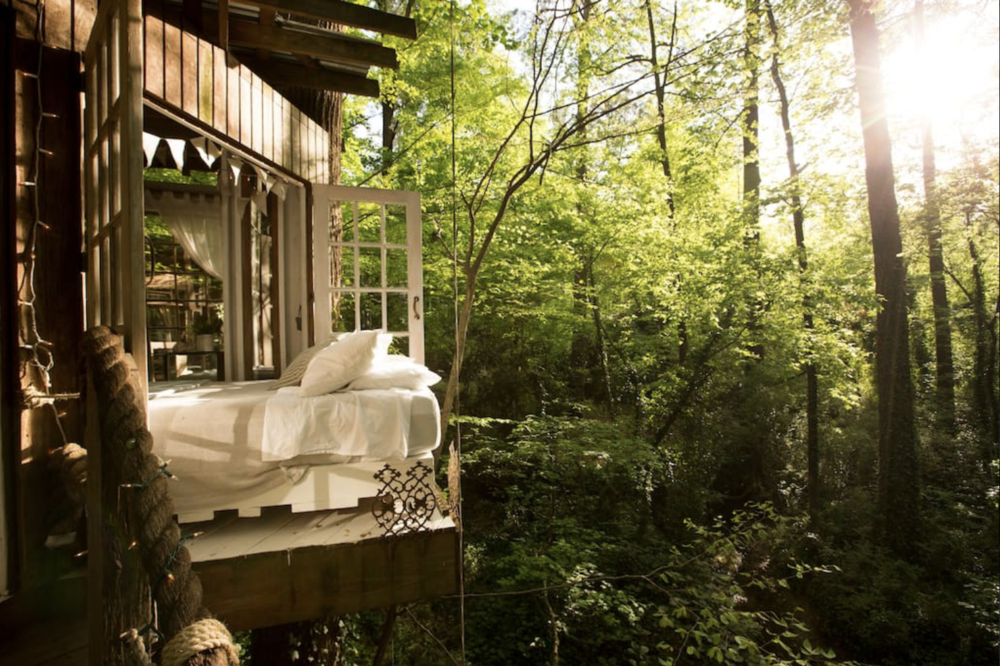 Your own treehouse - Airbnb