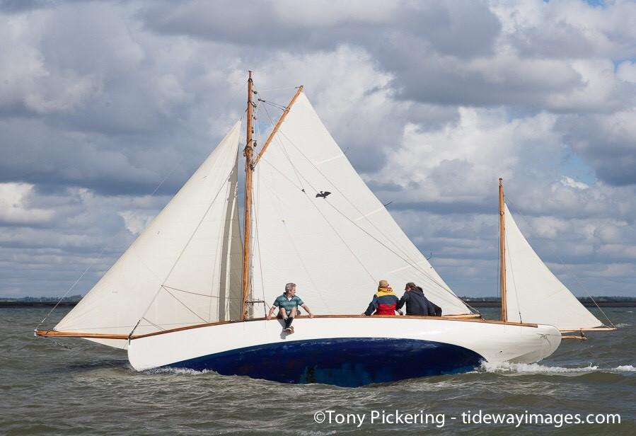 Cormorant - Racing Sails