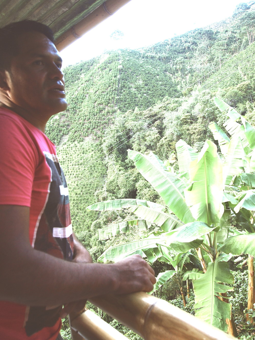 Alexander Ordoñez Bravo on his finca Los Naranjos, in Acevedo, Huila, Colombia