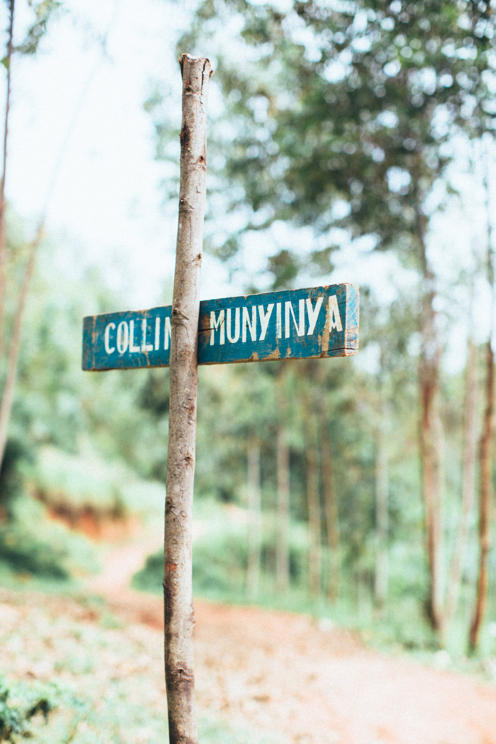 Munyinya Hill, photo courtesy of Long Miles Coffee Project