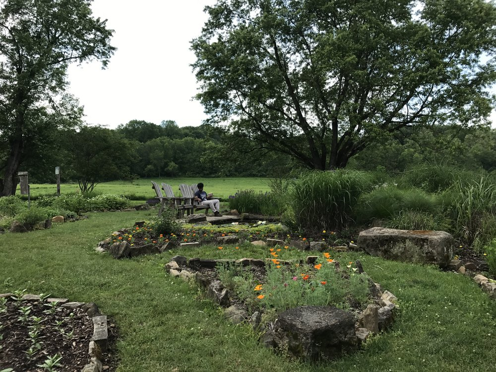 A snapshot of Kenyon's nature reserve. Photo Credit: Samantha Manno, 2018