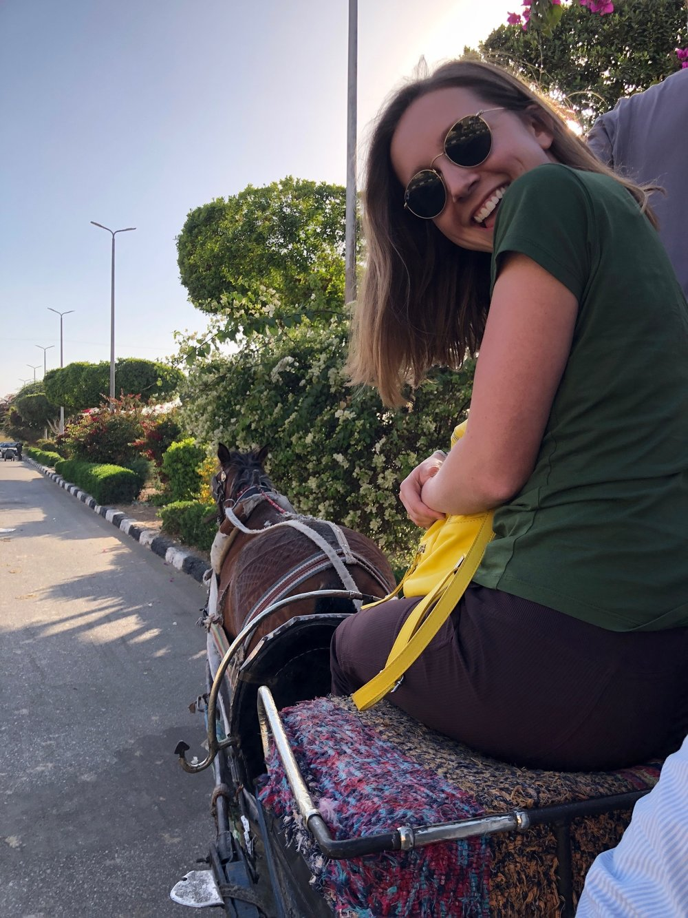 After Karnak, we rode another horse and buggy to get to a cafe where we ate dinner and waited for the night train. Photo credit: Arguin, 2019