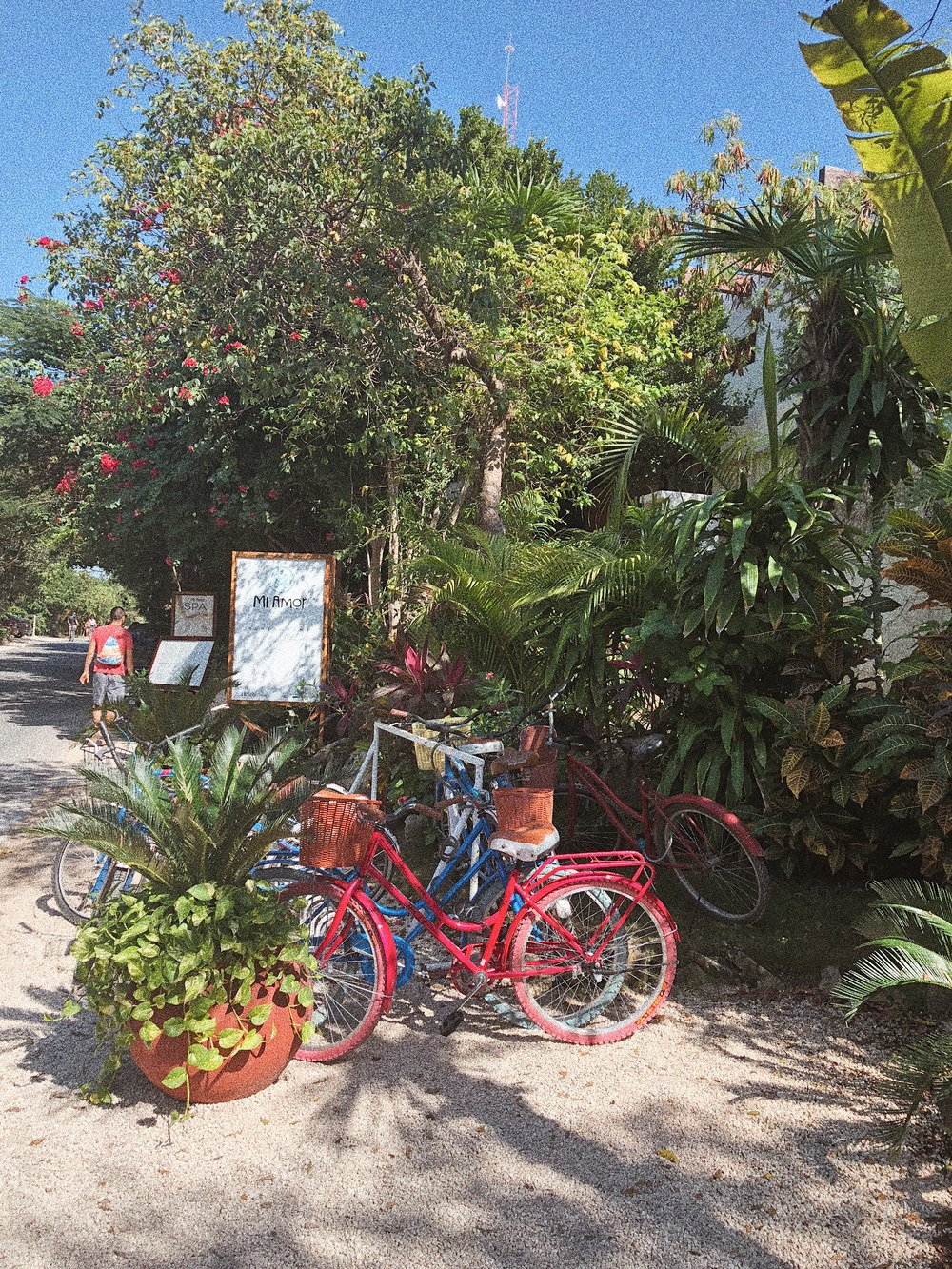 A bike stand outside the lush jungle setting of the Mi Amor hotel in Tulum, Mexico